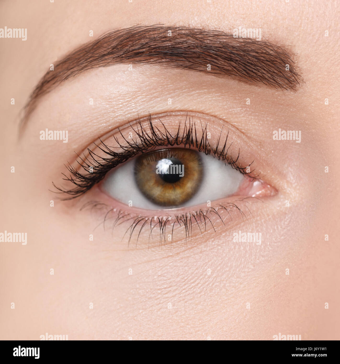 Nahaufnahme Von Braunen Auge Schöne Makro Bild Des Weiblichen Auges