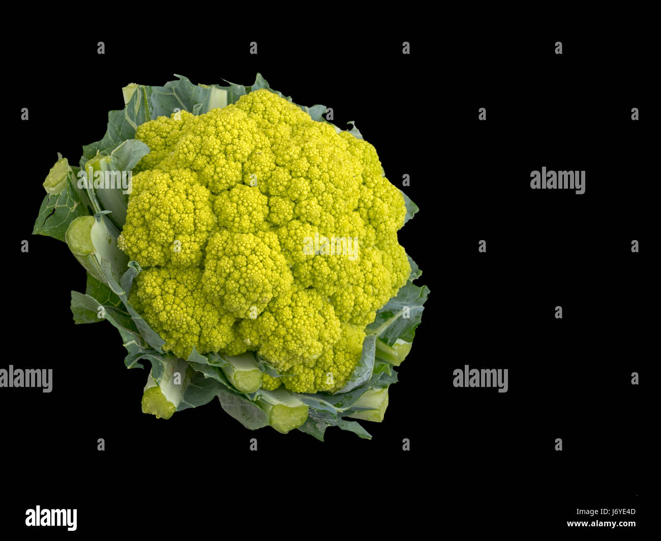 Grüner Blumenkohl. Gesundes Gemüse reich an Vitaminen, Mineralien und Mikronährstoffen. Stockbild
