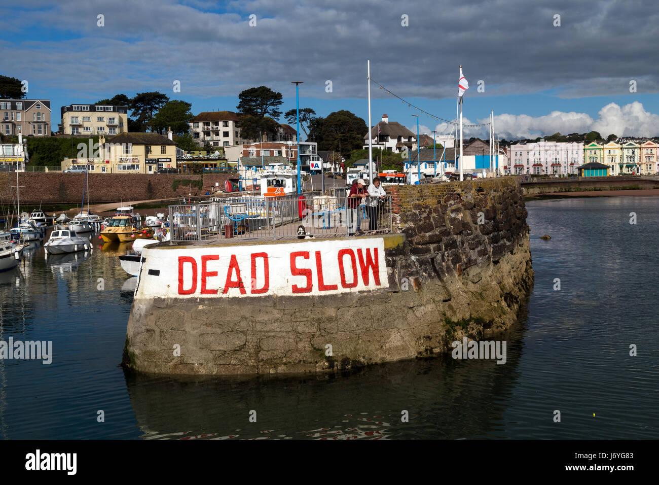 Paignton Inner harbour in Torbay der Geburtsort von Agatha Christie, Grande-Bretagne, groß, Großbritannien, Stockbild