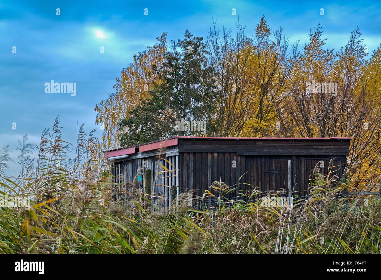 Holz Wild Stand Wald Hutte Herbst Herbst Blau Haus Unterschlupf