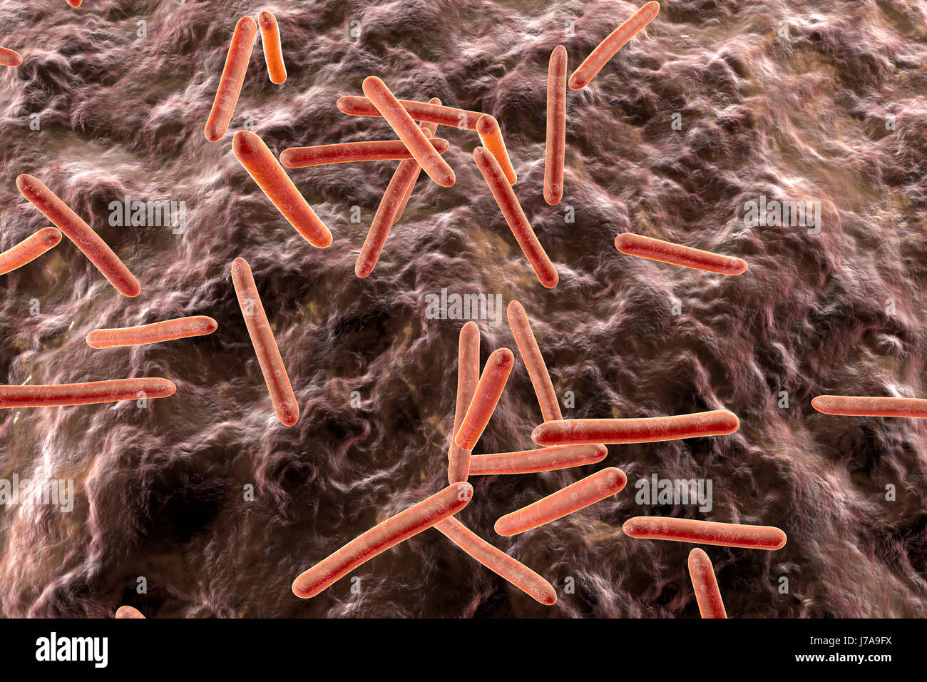 Tuberkulose-Bakterien im Organismus, 3D Rendering Stockbild