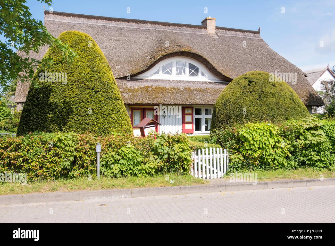Typische Reetdachhaus in Born Auf Dem Darß, Mecklenburg-Vorpommern, Deutschland Stockbild