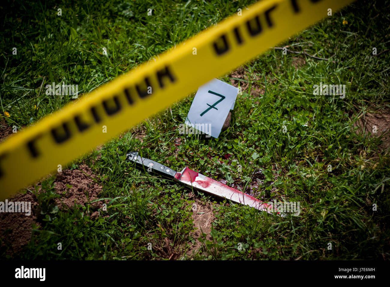 Tatort, Mord, Untersuchung, blutiges Messer auf dem Rasen, im Verlauf der Untersuchung Stockbild