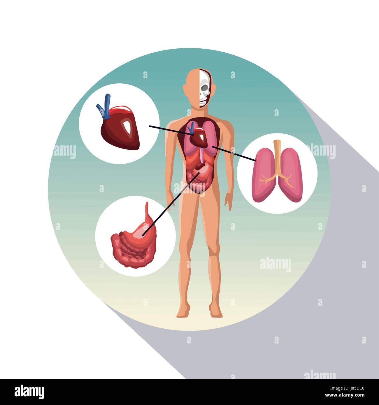 kreisförmigen Rahmen Schattierung des Plakat Closeup menschlichen ...