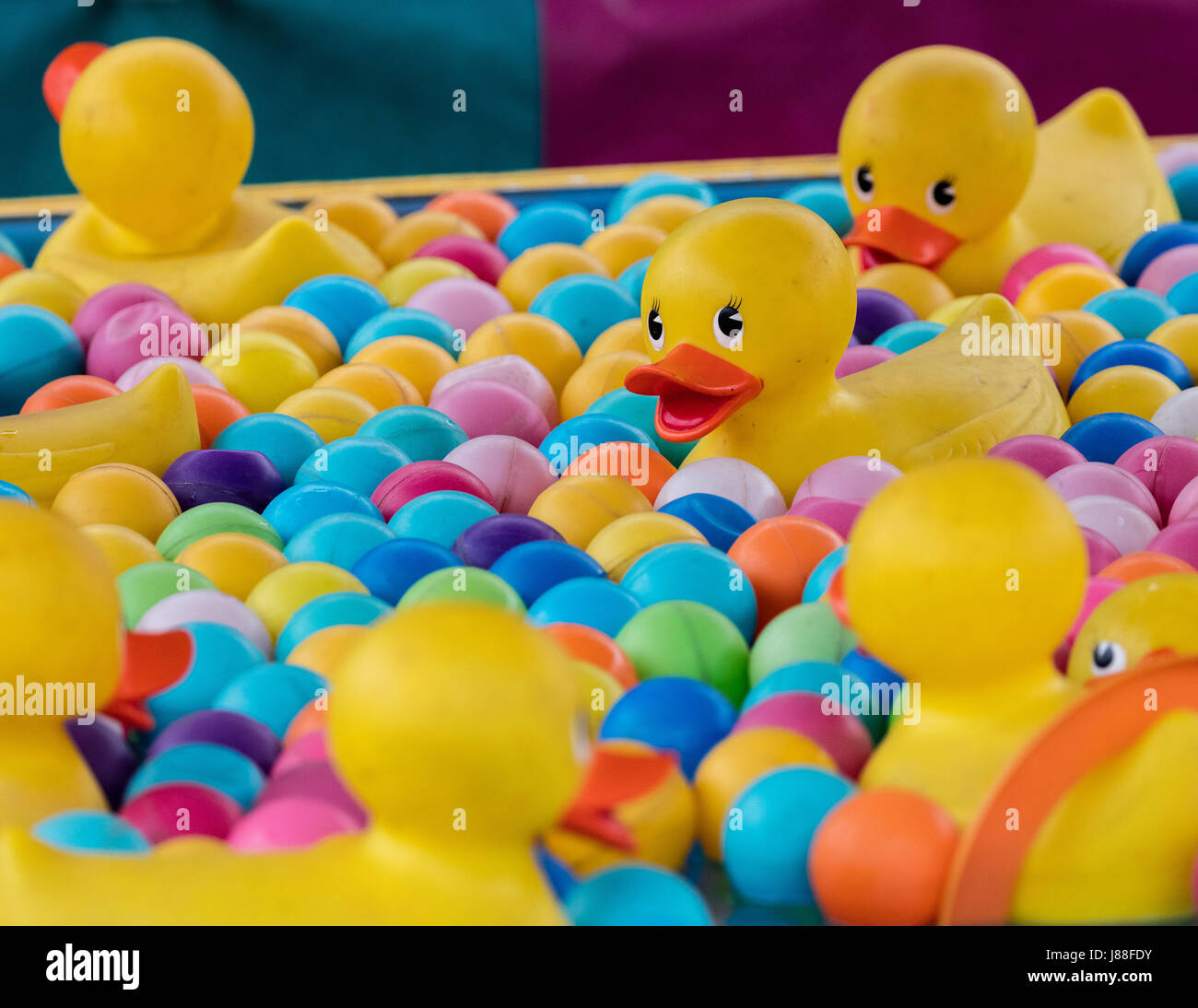 Ente Spiel