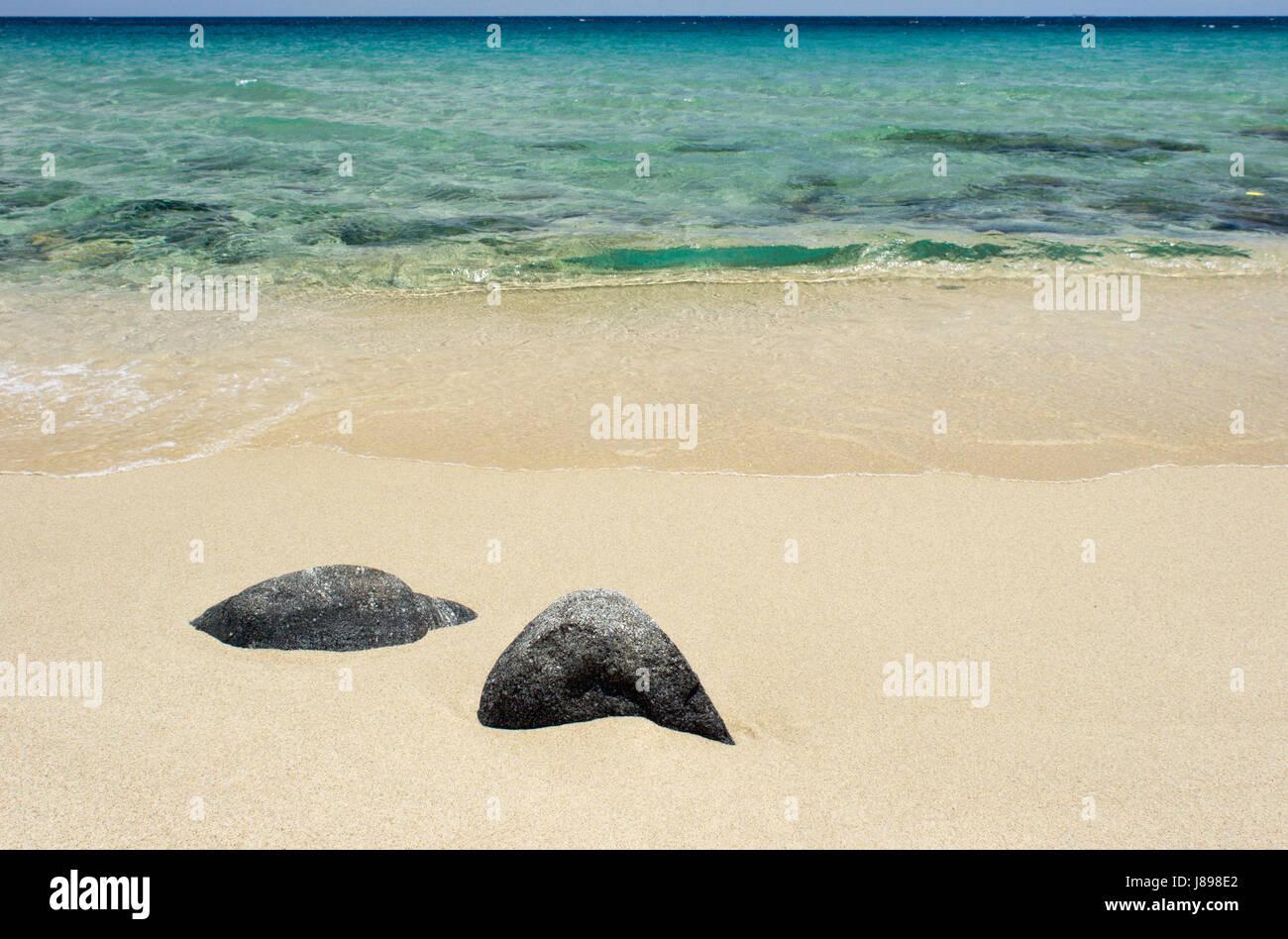 Sommer Sommerlich Mediterran Sardinien Italien Blau Reisen