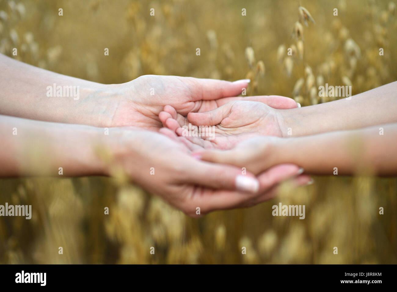 Mutter Kinder Händchenhalten Stockbild