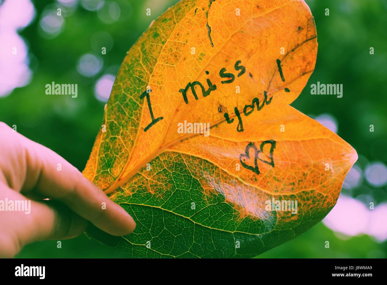 vermisse Bilder für Liebhaber