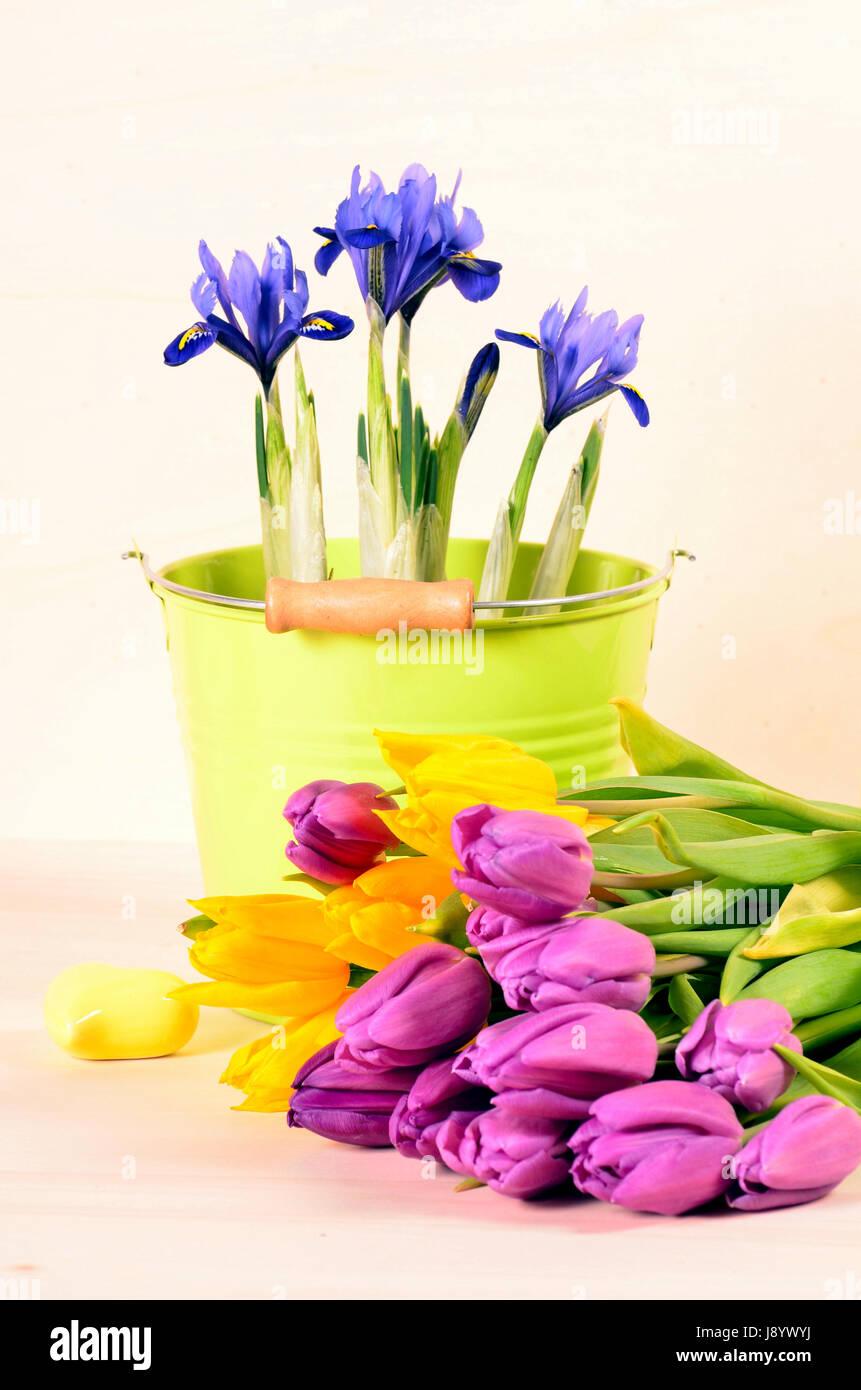 Gemütlich Blumen In Lebensmittelfarbe Fotos - Framing Malvorlagen ...