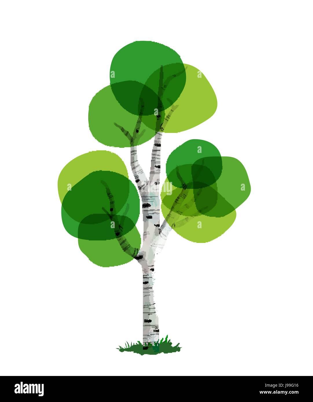 Stammbaum Baum Vorlage