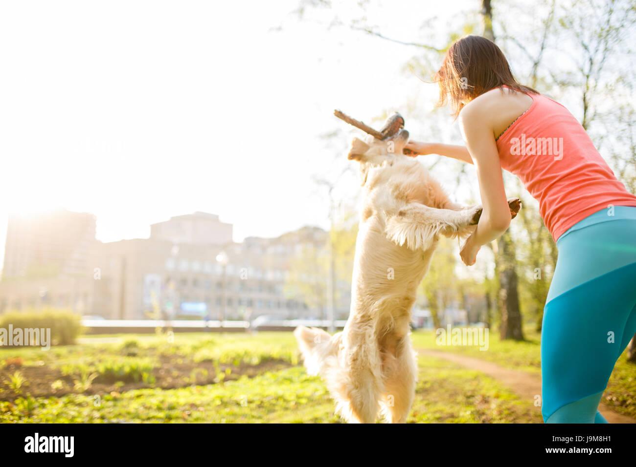 Brünette, Labrador mit Stick spielen Stockbild