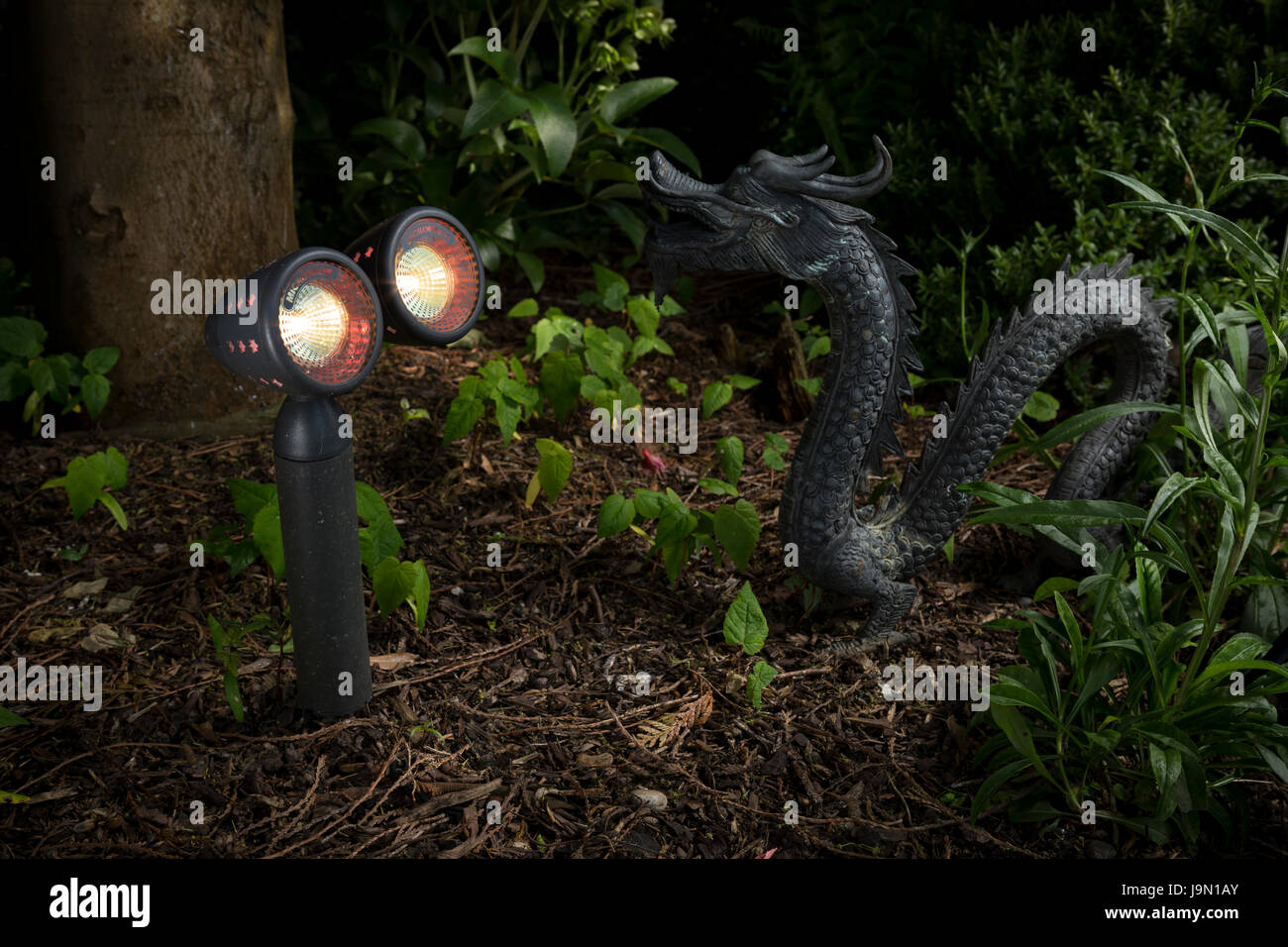 Wetterfeste Garten Led Beleuchtung Und Chinesische Drachen Feature
