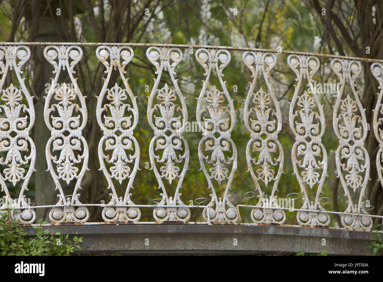 Italien Toskana Lucca Zaun Europa Stadt Lucca Stadt Garten