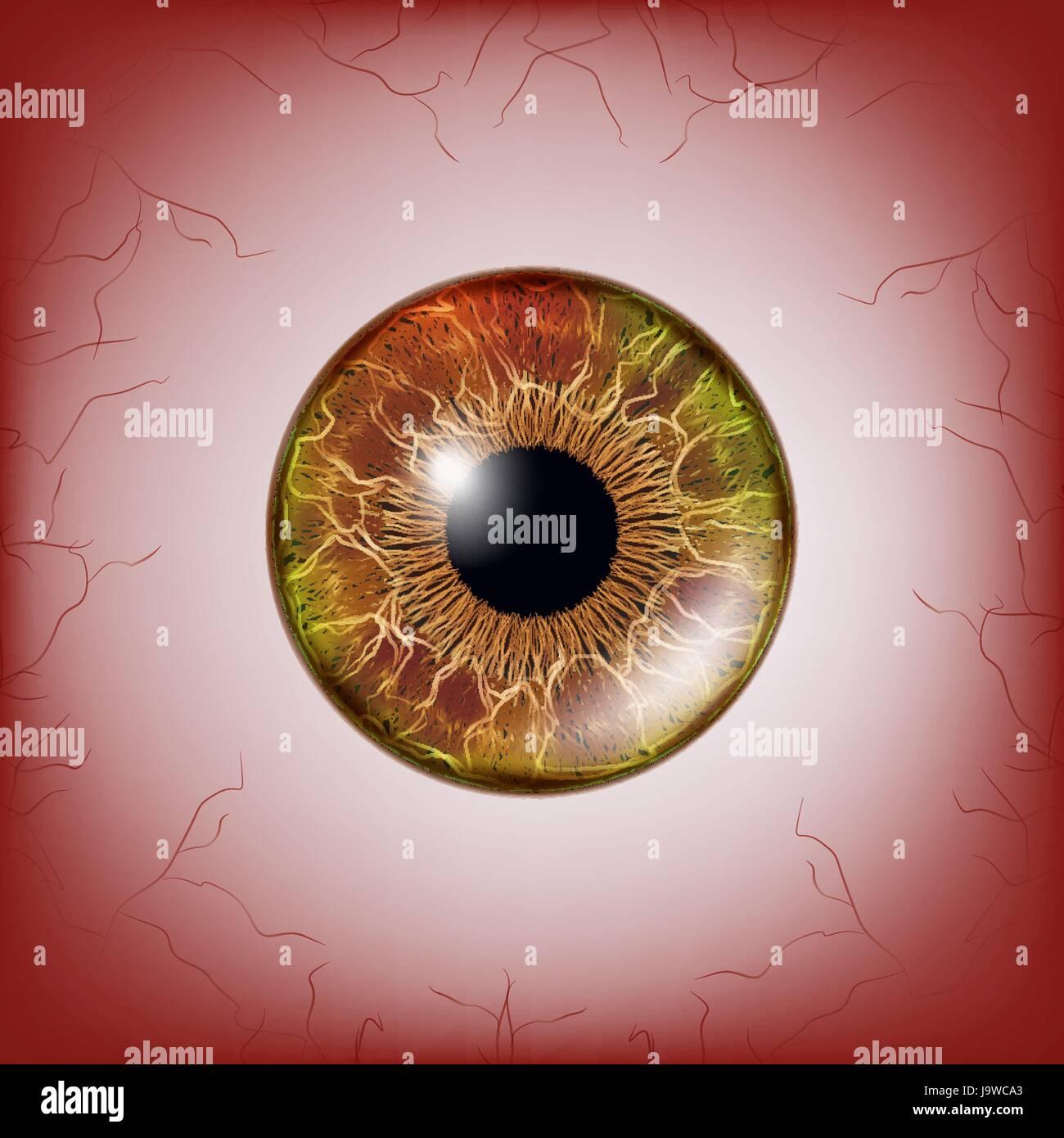 Rote Augen Unheimlich Blutig Realistische Augäpfel Gruselige