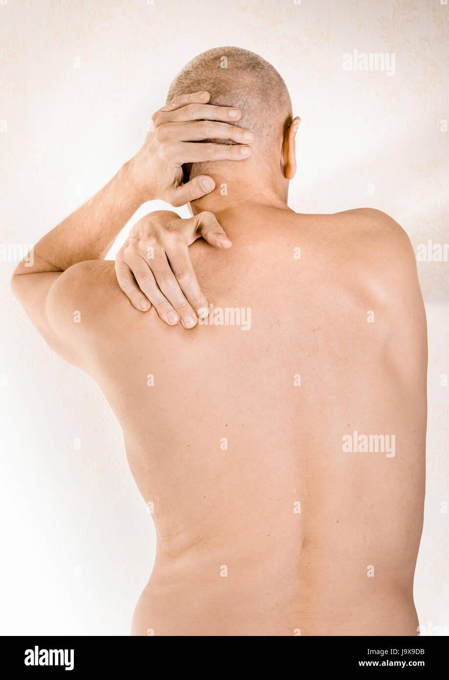 Ausgezeichnet Muskeln Des Oberen Rückens Fotos - Menschliche ...