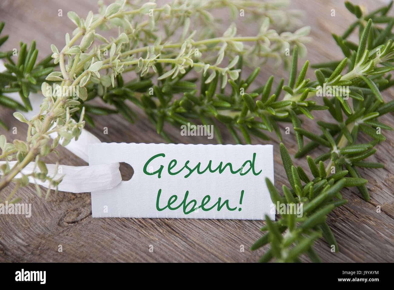 ein Tag mit dem deutschen Worte Gesund Leben was bedeutet Leben gesund mit Kräutern im Hintergrund Stockbild