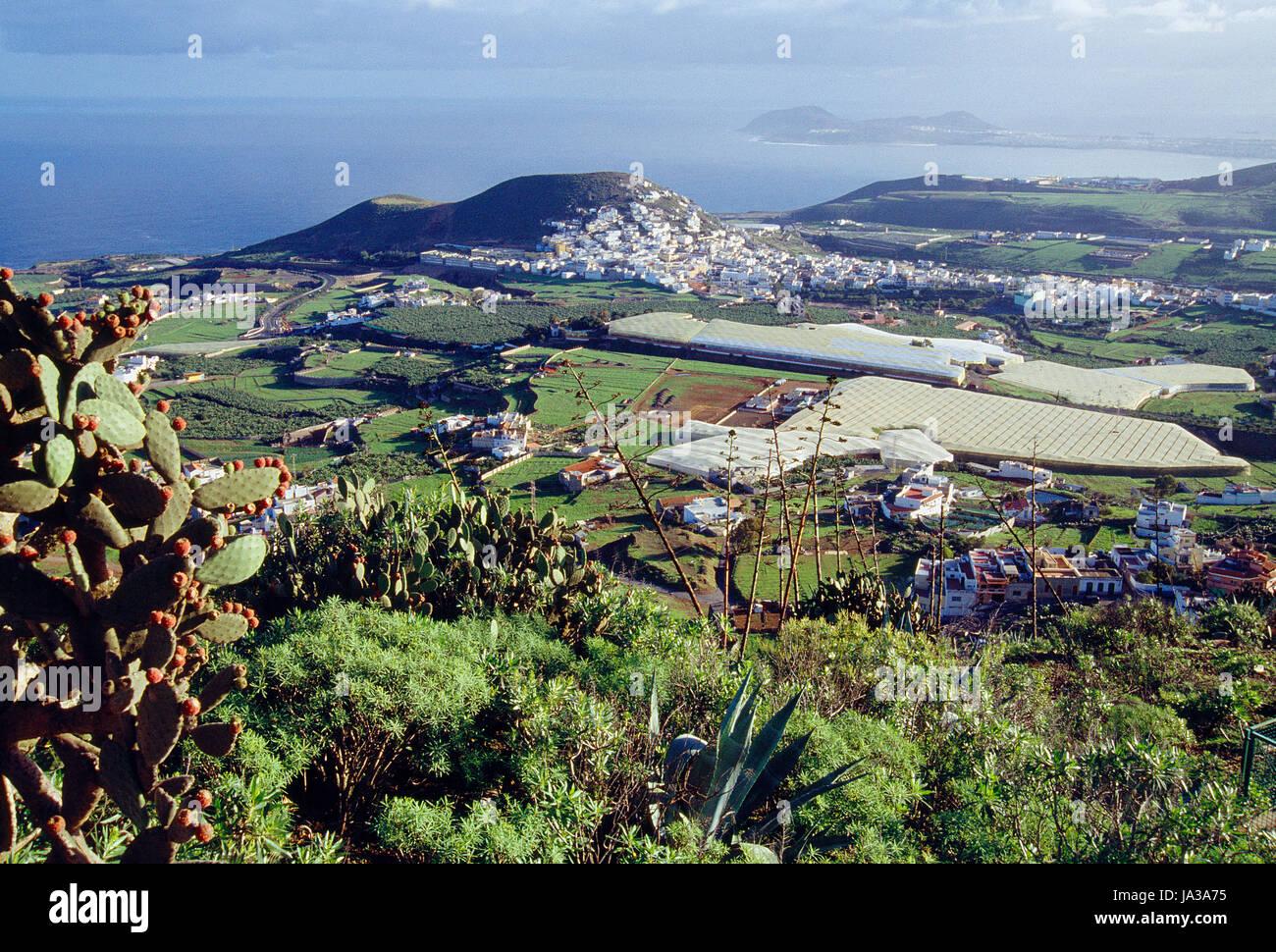 Übersicht von Montaña de Arucas. Gran Canaria Insel, Kanarische Inseln, Spanien. Stockbild