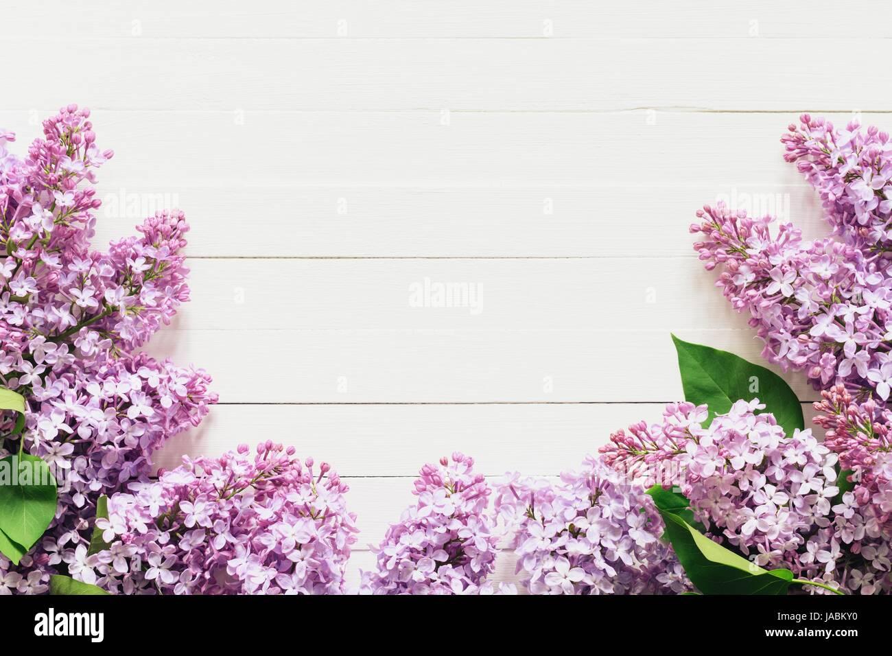 Lila Blumen Rahmen Zusammensetzung auf weißem Hintergrund. Wohnung ...
