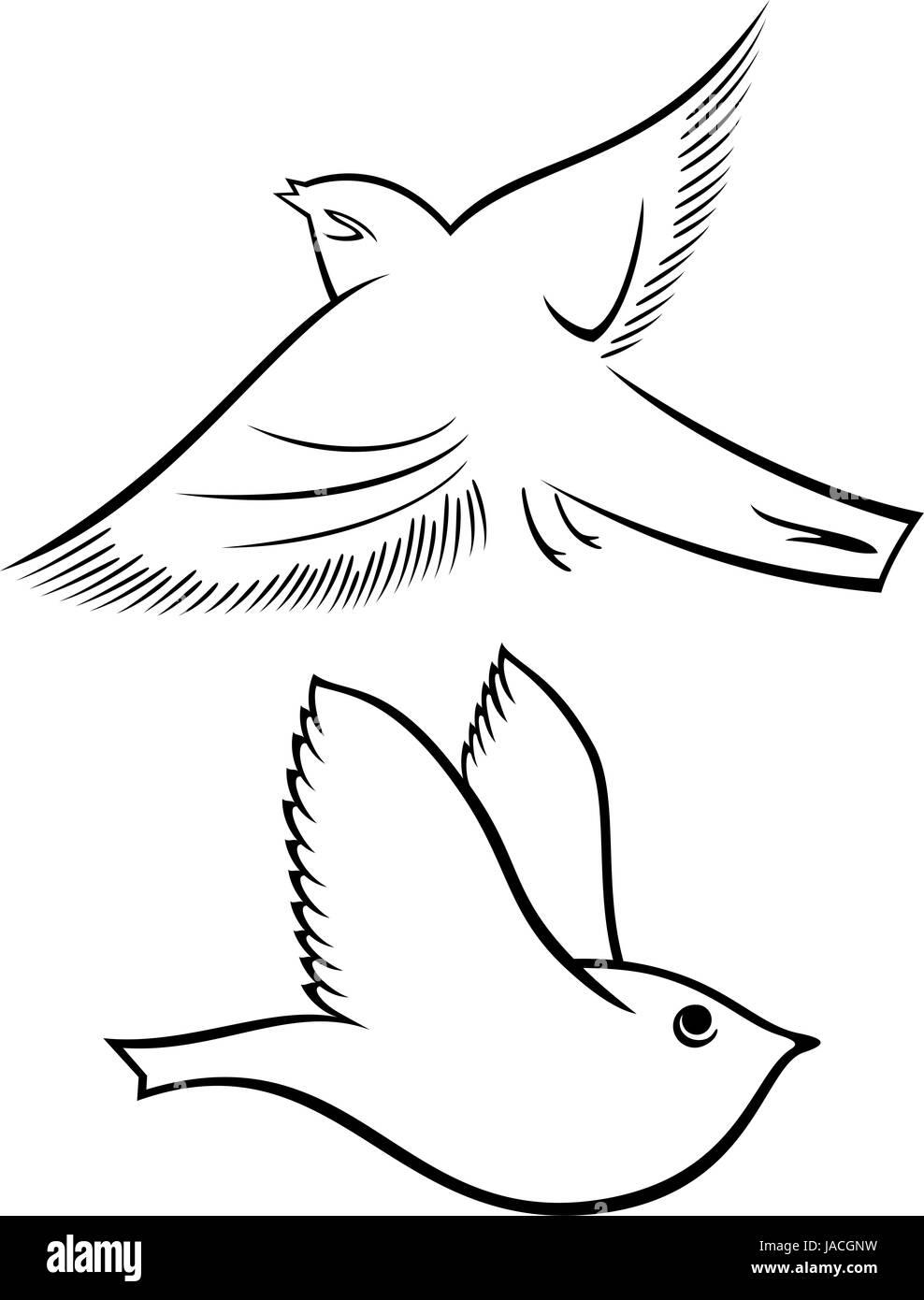 Black White Cartoon Illustration Birds Stockfotos & Black White ...