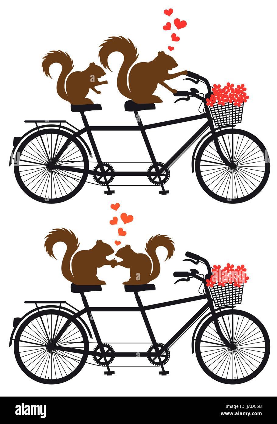 Eichhornchen Paar In Liebe Auf Tandem Fahrrad Mit Roten Herzen