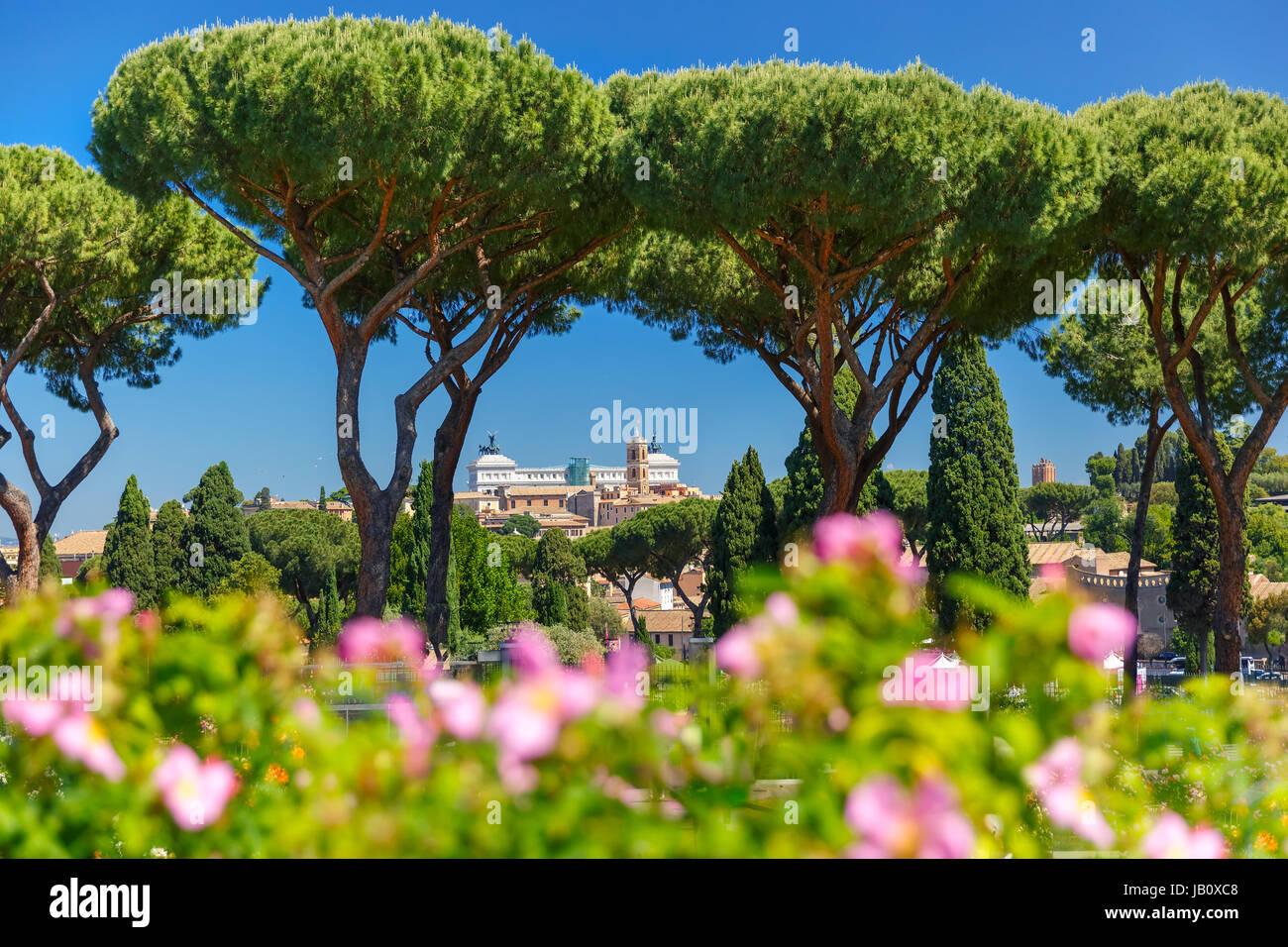 Rom stieg Garten, Italien Stockbild