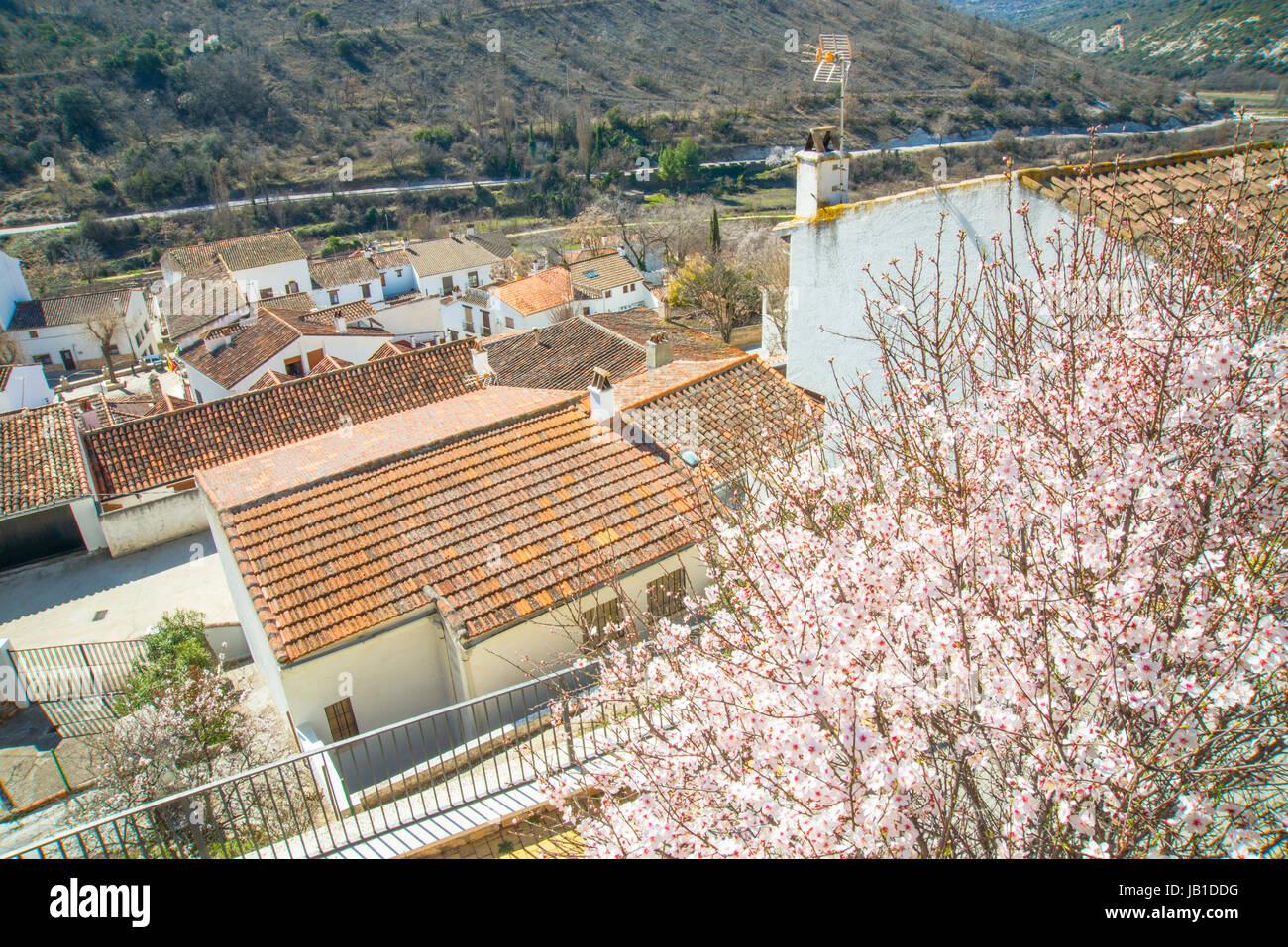 Olmeda de Las Fuentes, Provinz Madrid, Spanien. Stockbild