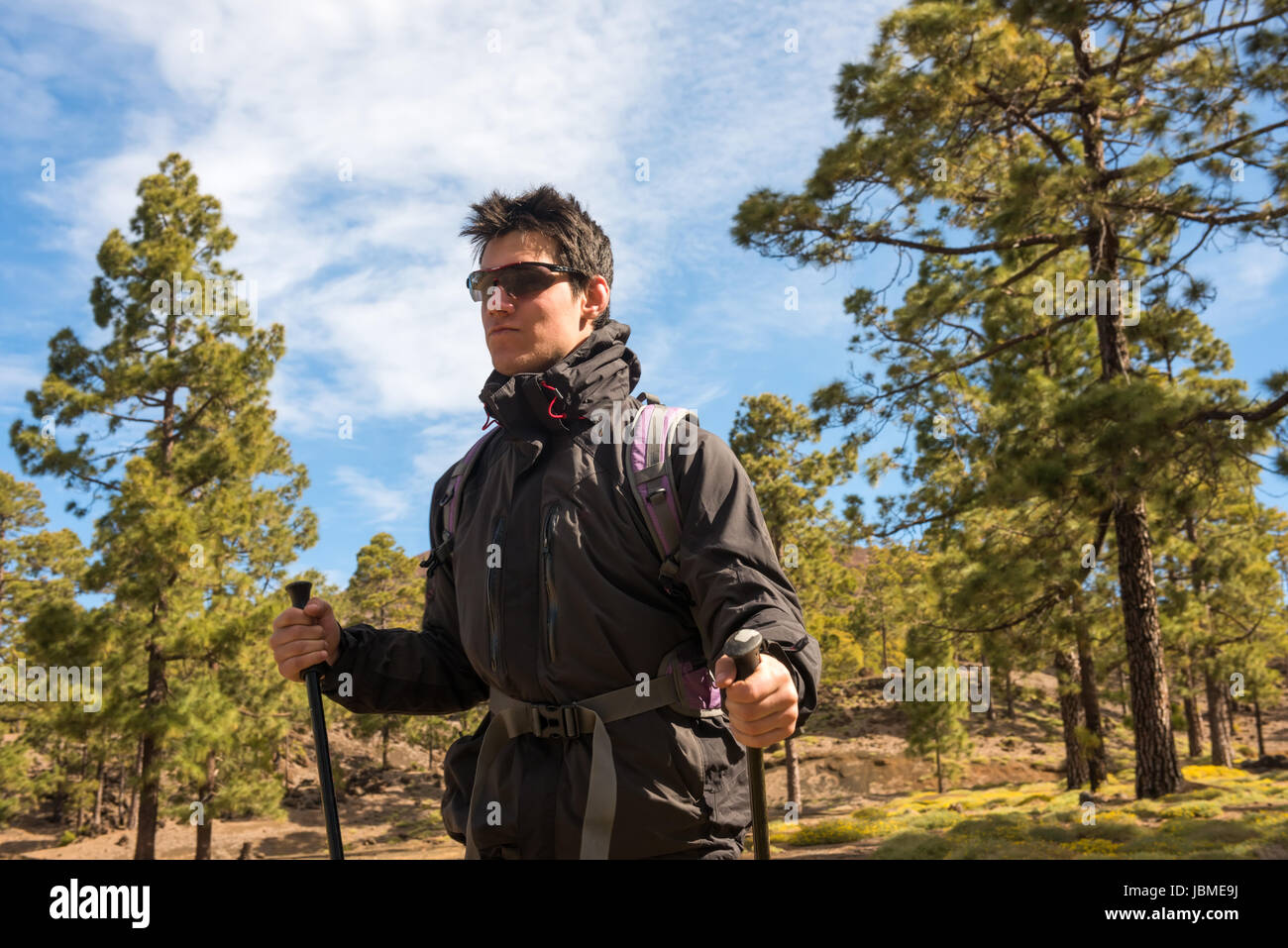 Wanderer Mensch Wandern im Wald Tenefire, Kanarischen Stockbild