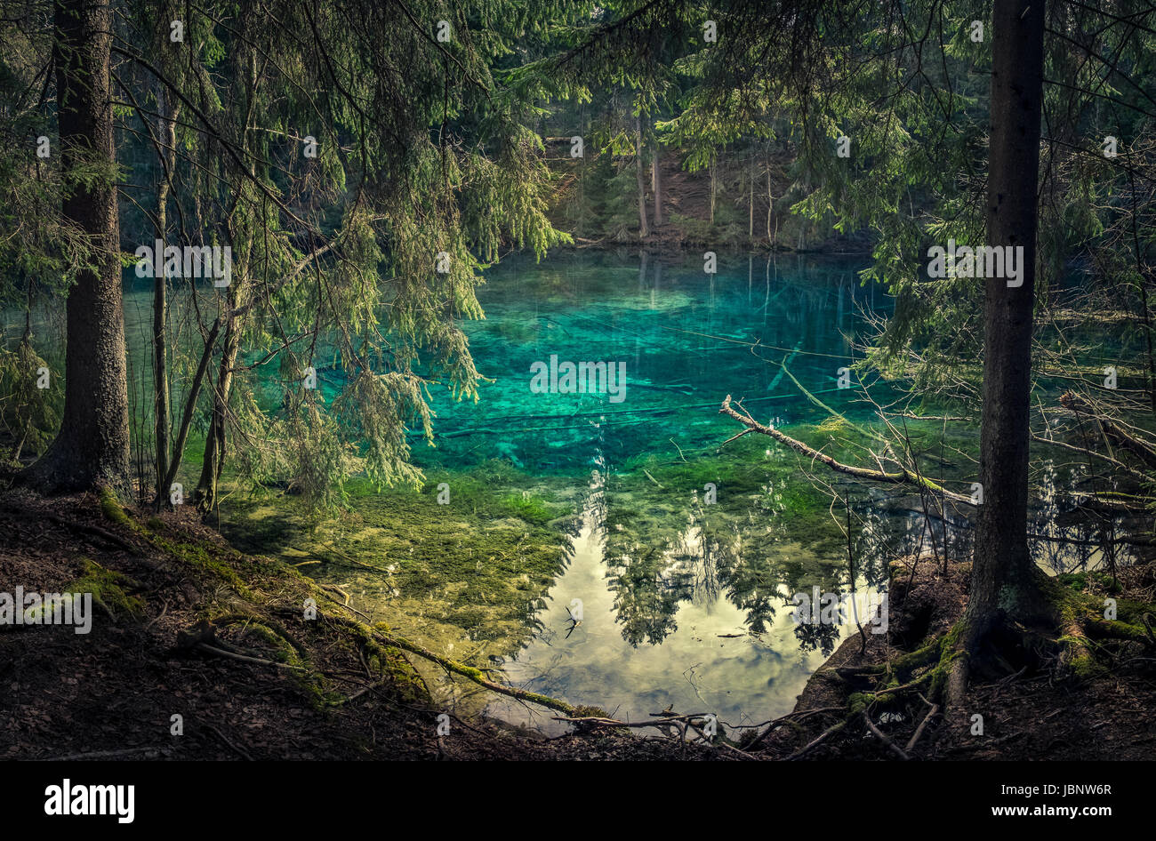 Naturquelle in Südfinnland. Wasser ist so klar, dass es ist Türkis Farbe. Wasser kann direkt aus der Quelle Stockbild