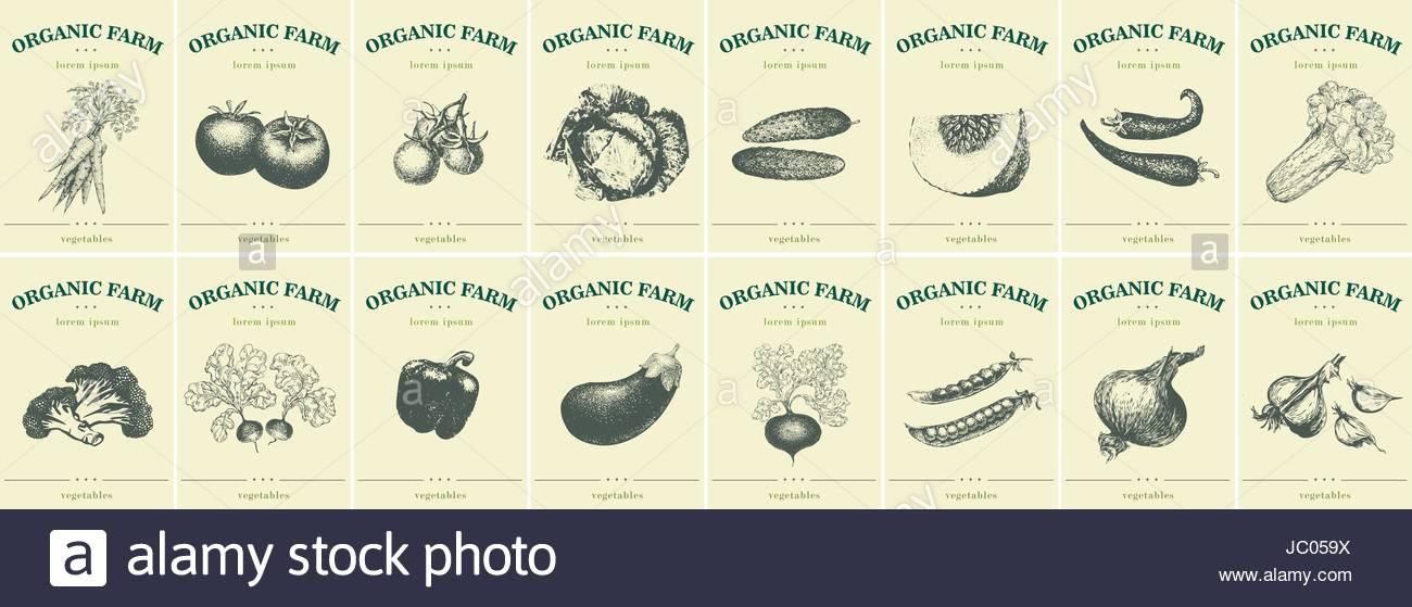 Berühmt Lebensmittel Log Vorlage Galerie - Bilder für das Lebenslauf ...