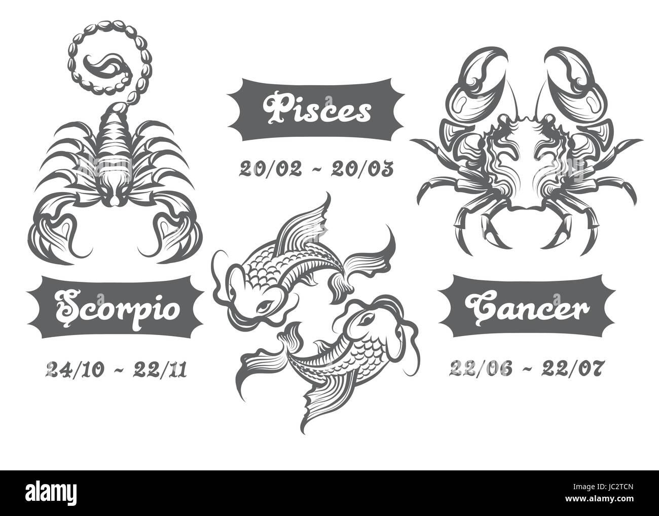 Satz Von Wasser Sternzeichen Skorpion Fische Und Krebs In Gravur