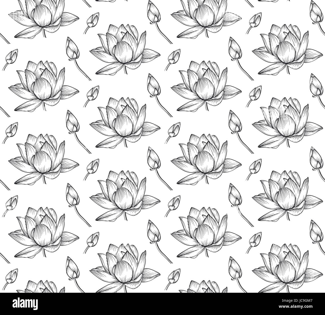 lotus flower drawing isolated icon stockfotos lotus. Black Bedroom Furniture Sets. Home Design Ideas
