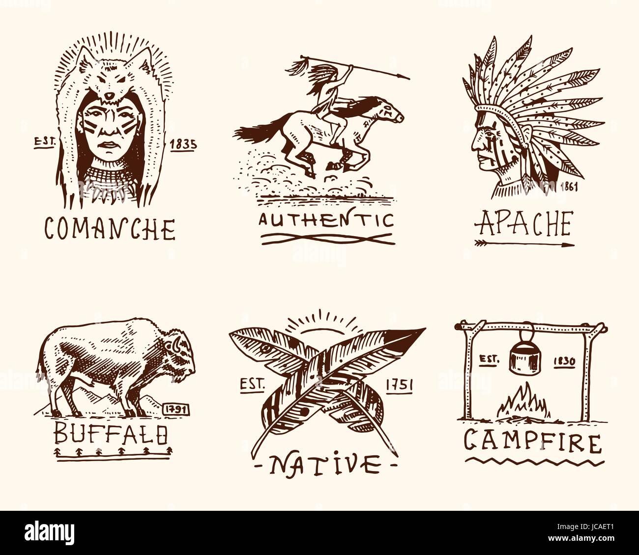 Native American Buffalo Stockfotos & Native American