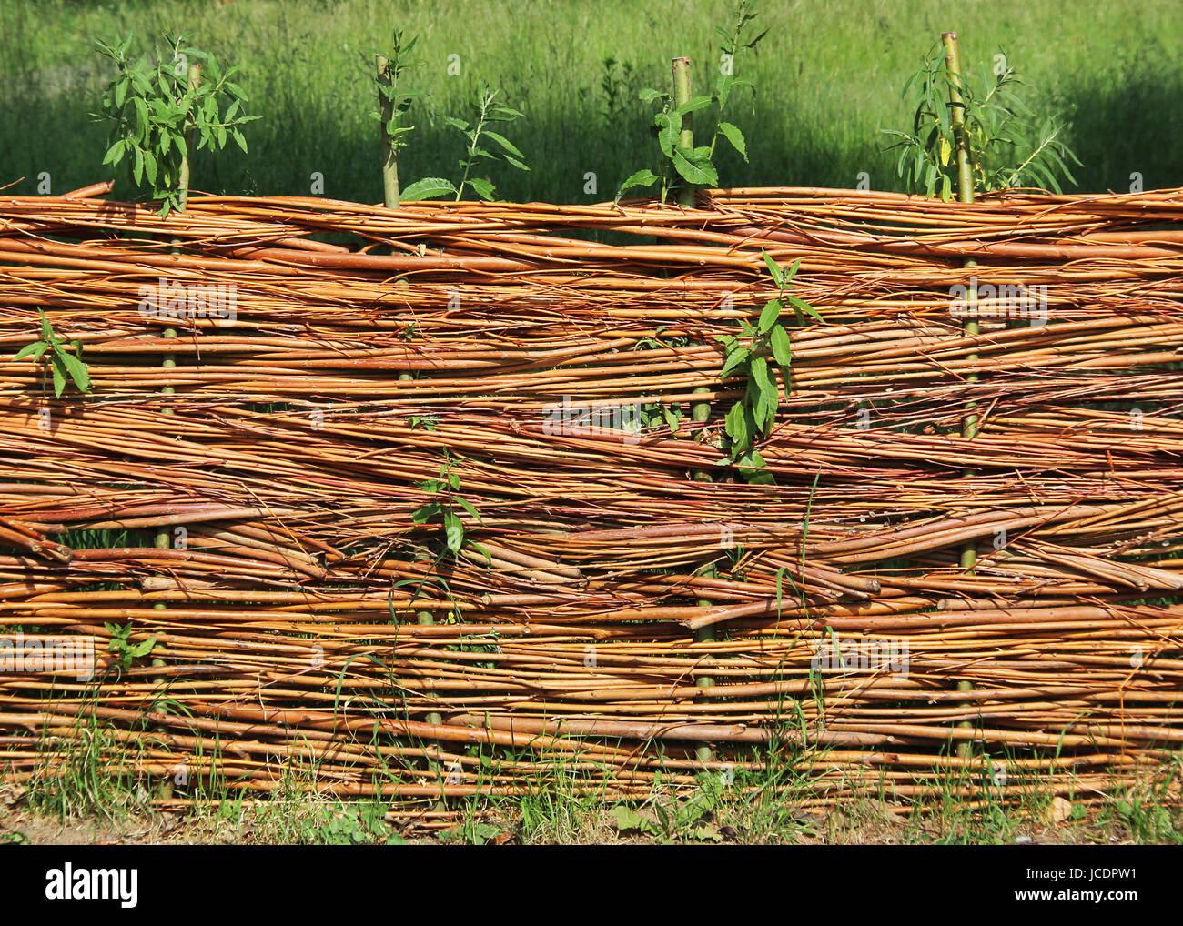 Flechtzaun Stockfotos & Flechtzaun Bilder Alamy