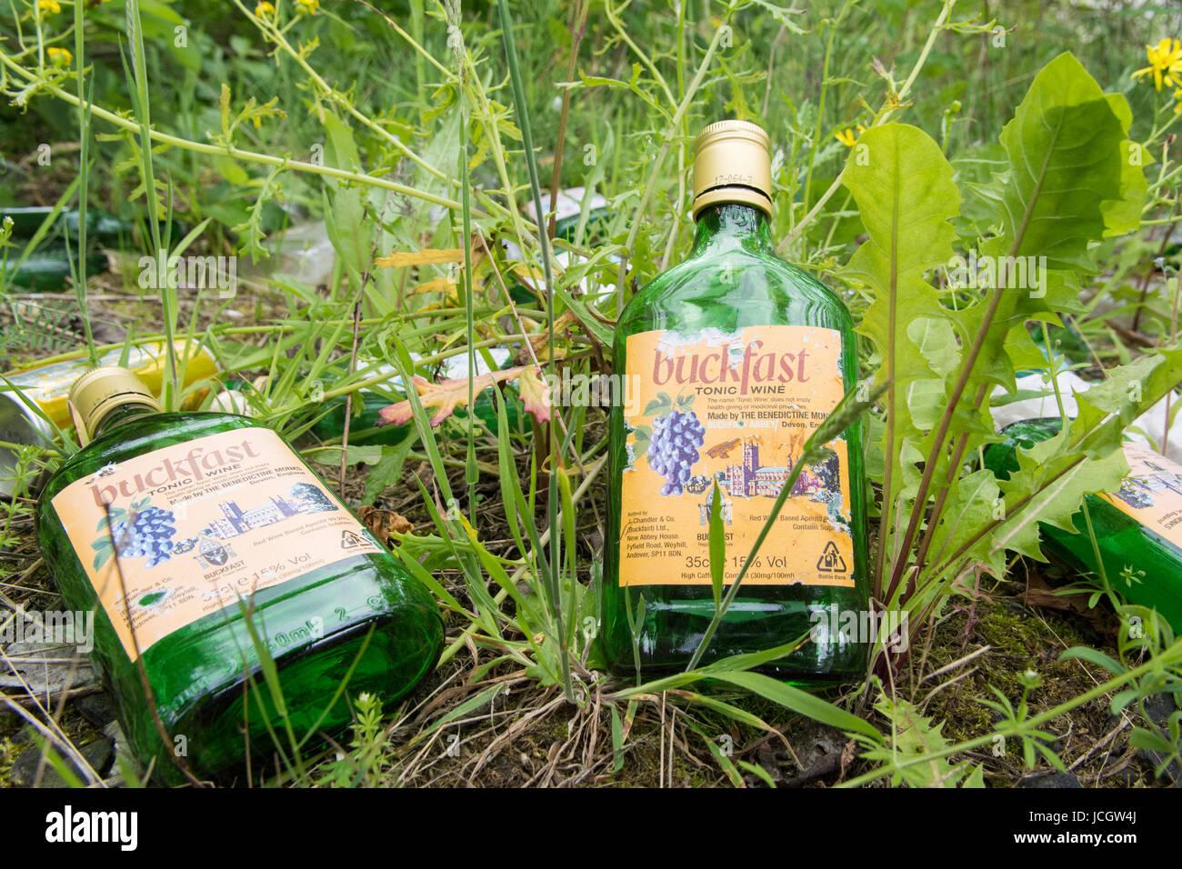 Empty Bottles Of Alcohol Stockfotos & Empty Bottles Of Alcohol ...