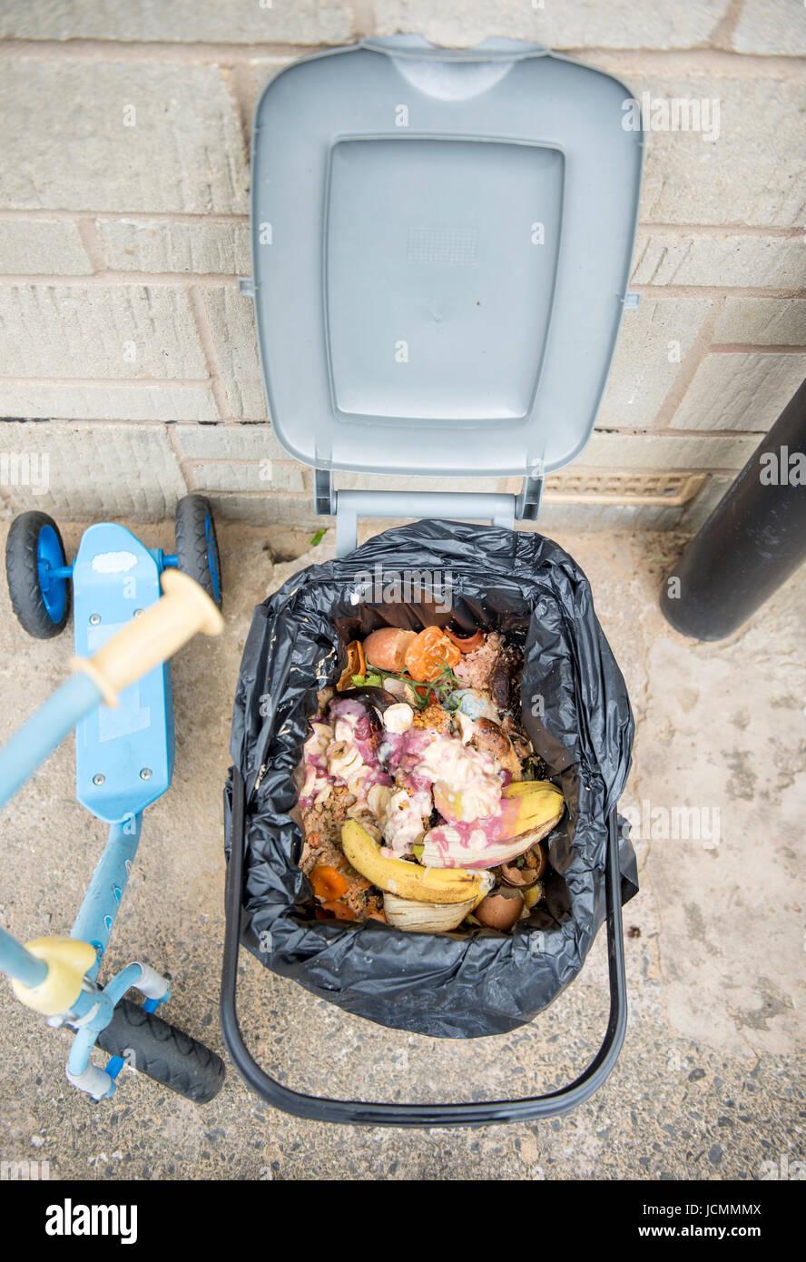 Eine einheimische Küche Abfallbehälter, mit Maden befallen Stockfoto ...