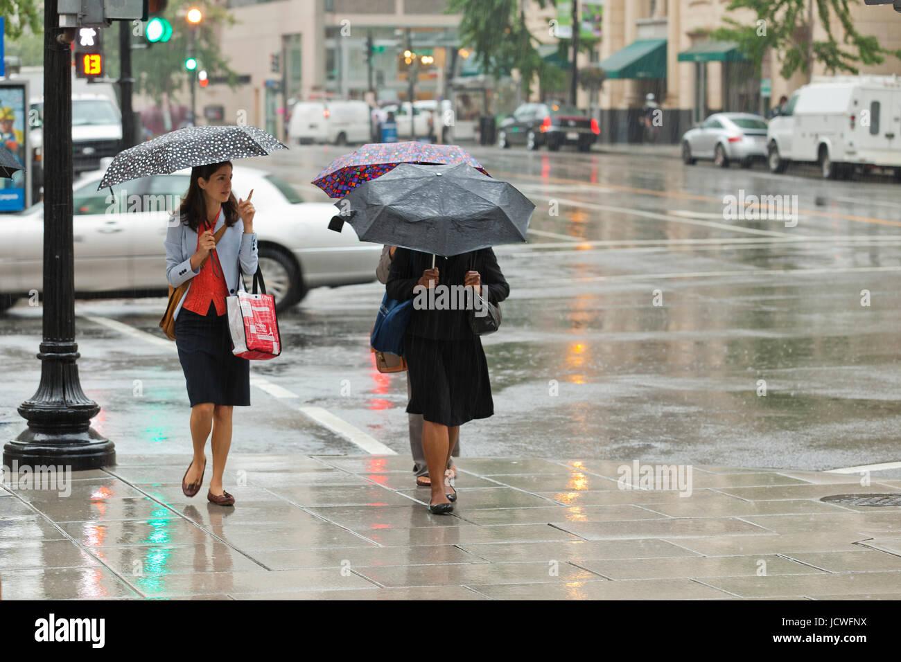 Frauen gehen mit Regenschirmen während einem Regentag (Frau mit Regenschirm) - Washington, DC USA Stockbild
