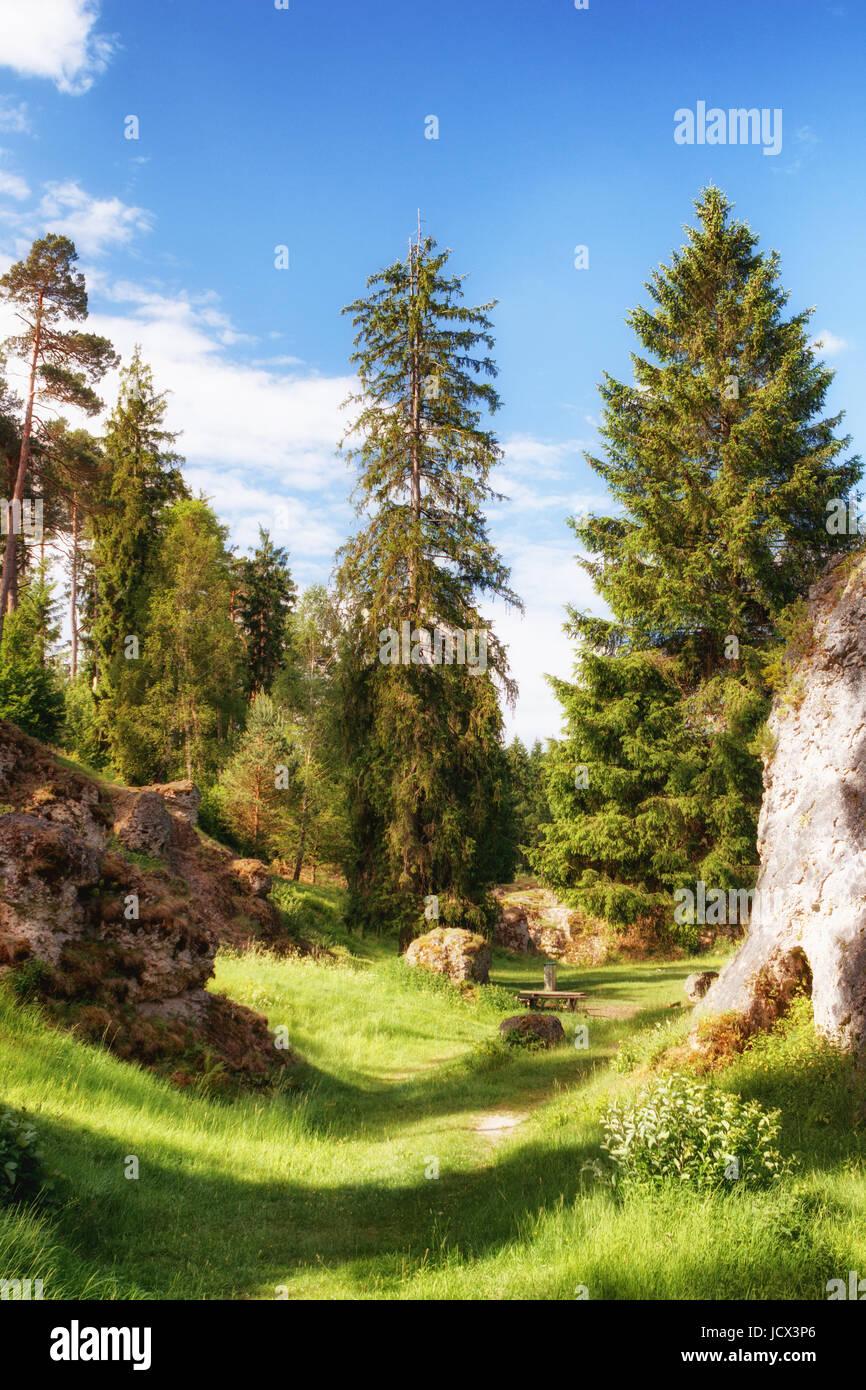 Landschaft mit Felsen und Bäume im wental (wen Valley) felsenmeer im Schwäbischen albnear Bartholomä, Stockbild