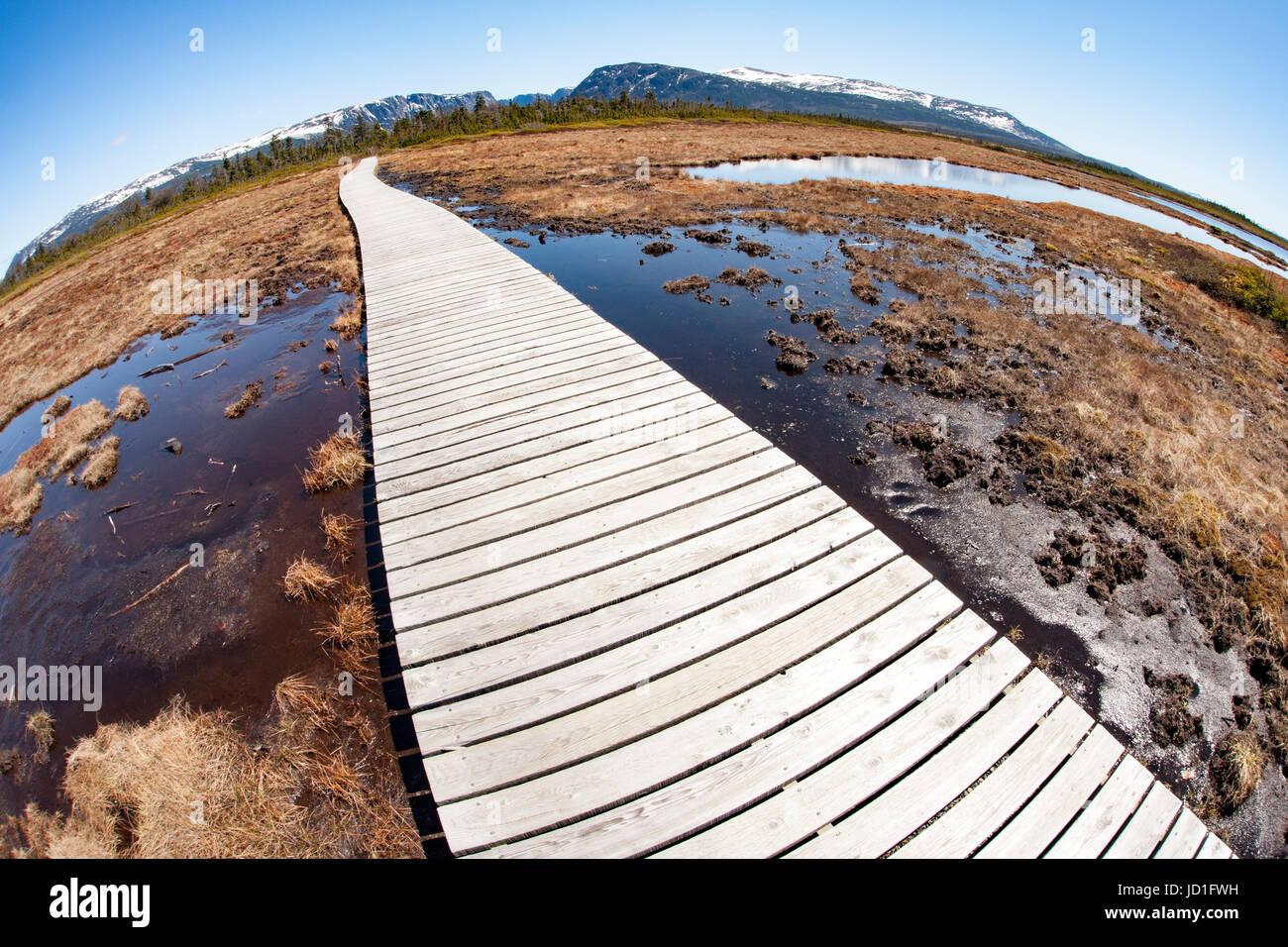 Fisheye Perspektive der Trail, Western Brook Pond, Gros Morne National Park, Neufundland, Kanada Stockbild