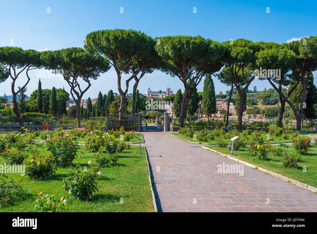 Rom Italien Die Touristische Gemeinde Rosen Auf Dem Aventin