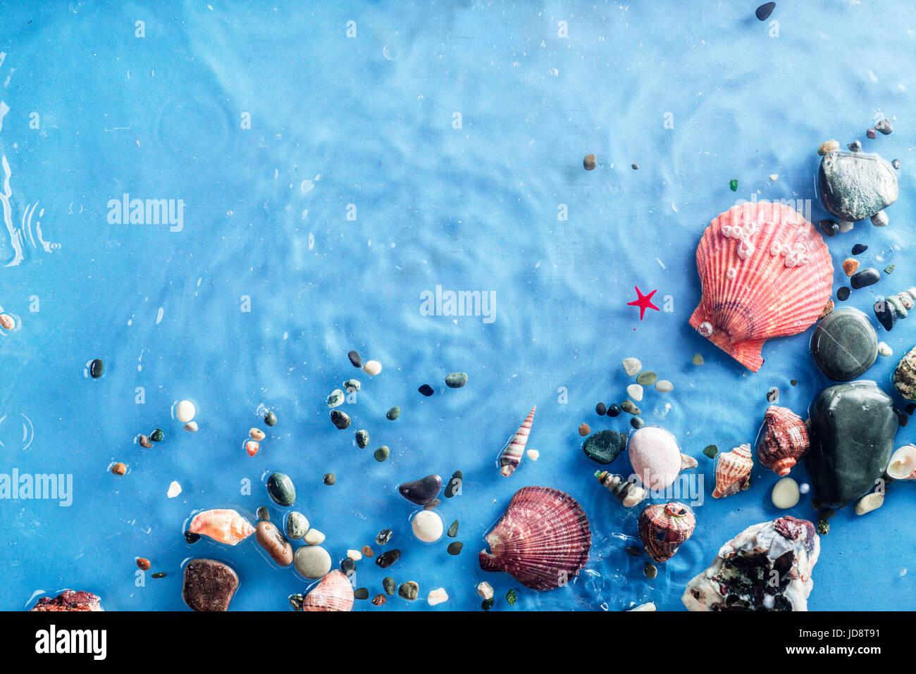 Marine Kopie Gitterrohrrahmen mit Muscheln, Kieselsteinen, Sand und eine Welligkeit von Seawave. Still-Leben unter Stockfoto