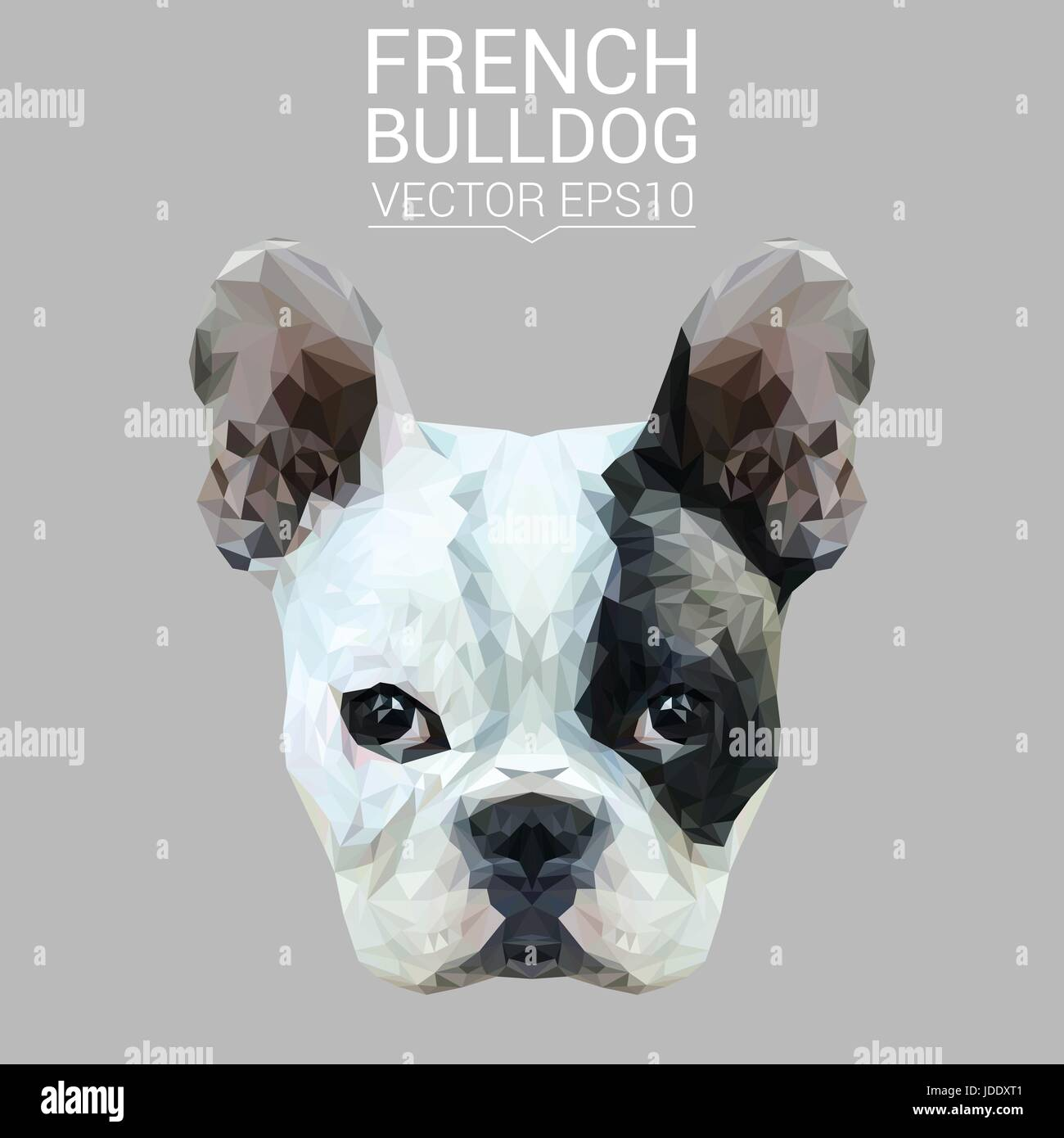 Französische Bulldogge Tier low-Poly-Design. Dreieck-Vektor-Illustration. Stockbild