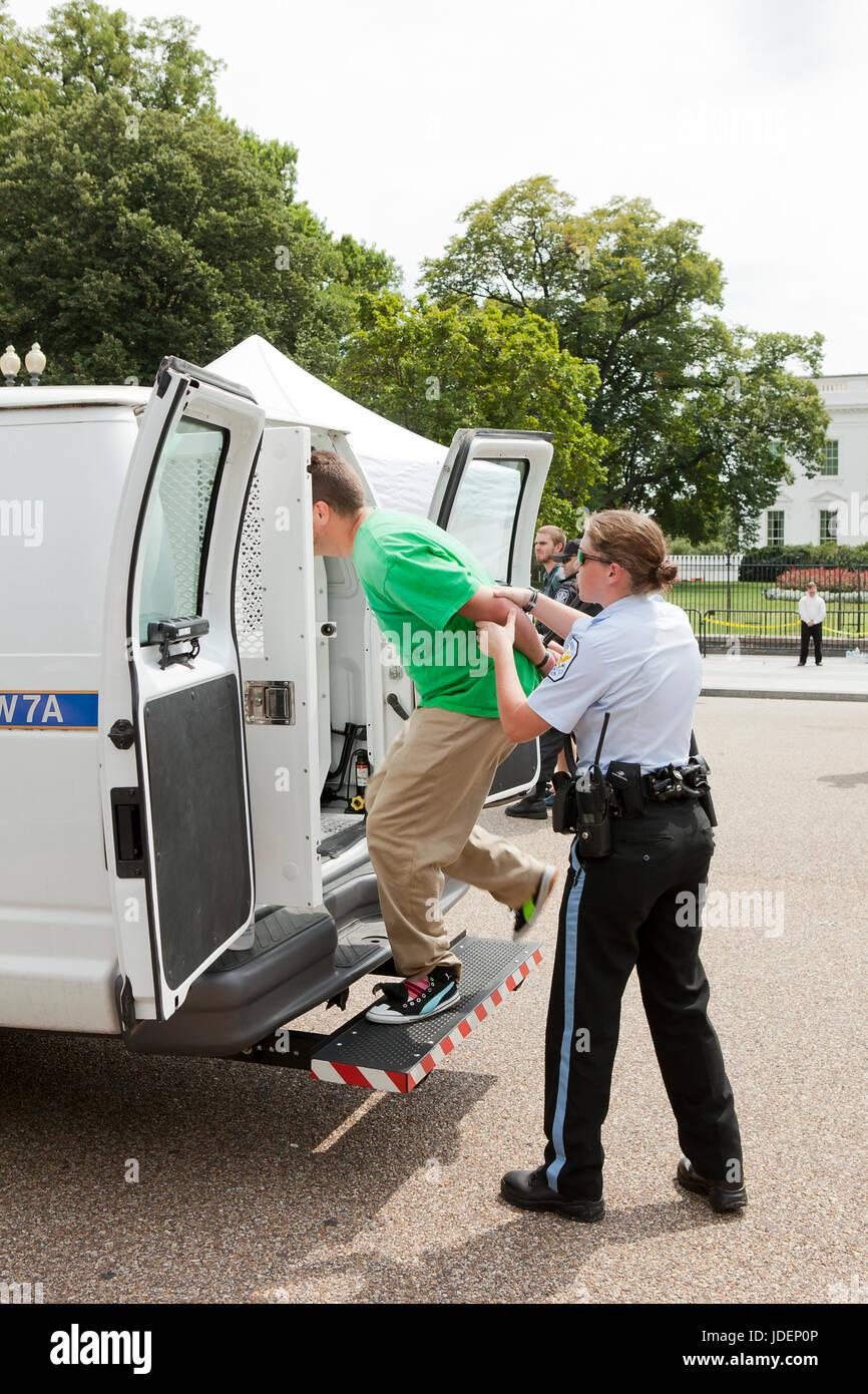 Polizei verhaftet Umwelt Demonstranten führte in Polizei-Transporter - Washington, DC USA Stockbild