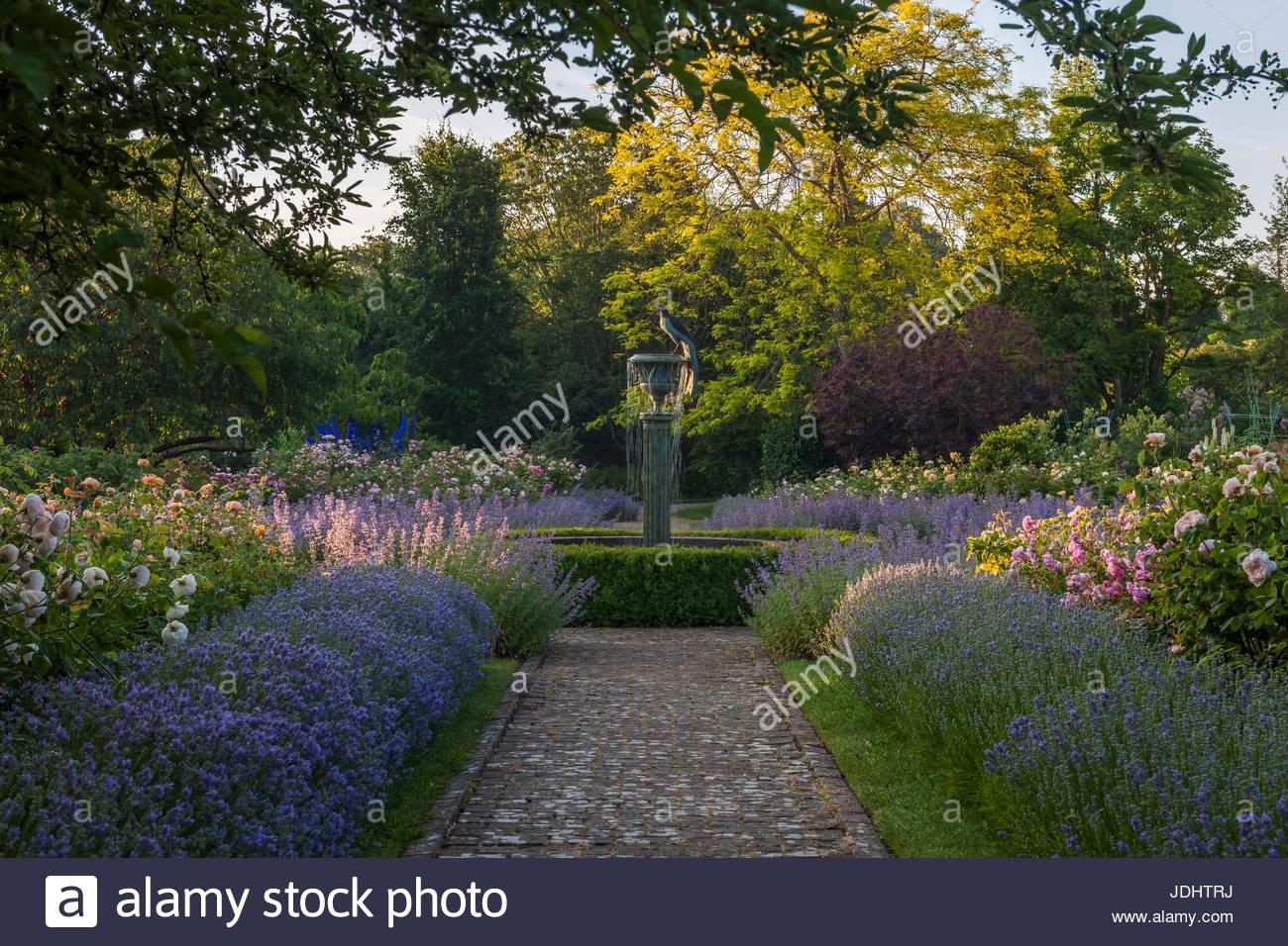 formalen Rosengarten Borde Hill Stockbild