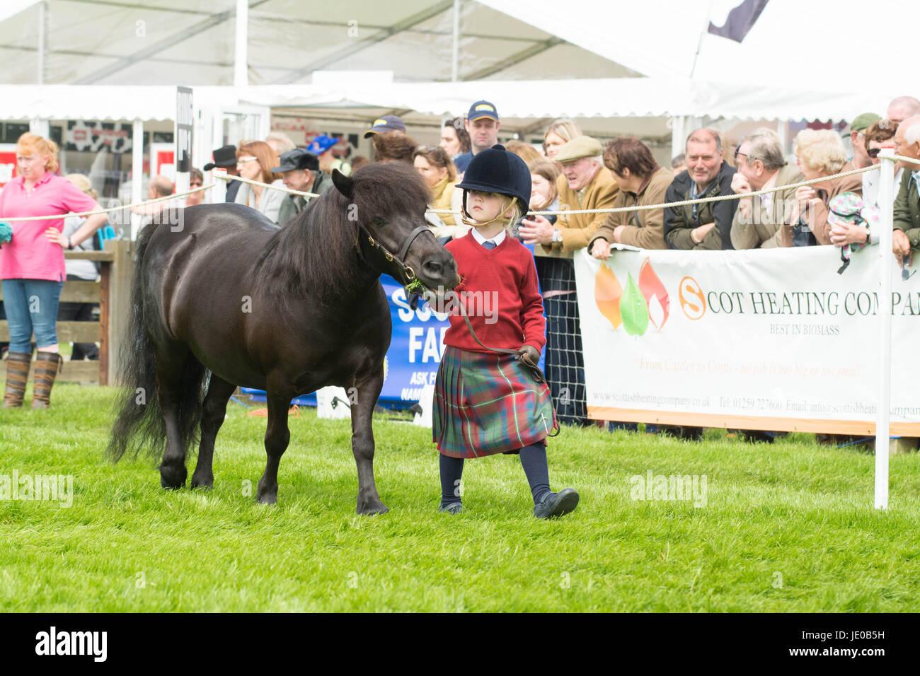 Royal Highland Show 2017, Edinburgh, Schottland, Großbritannien Stockbild