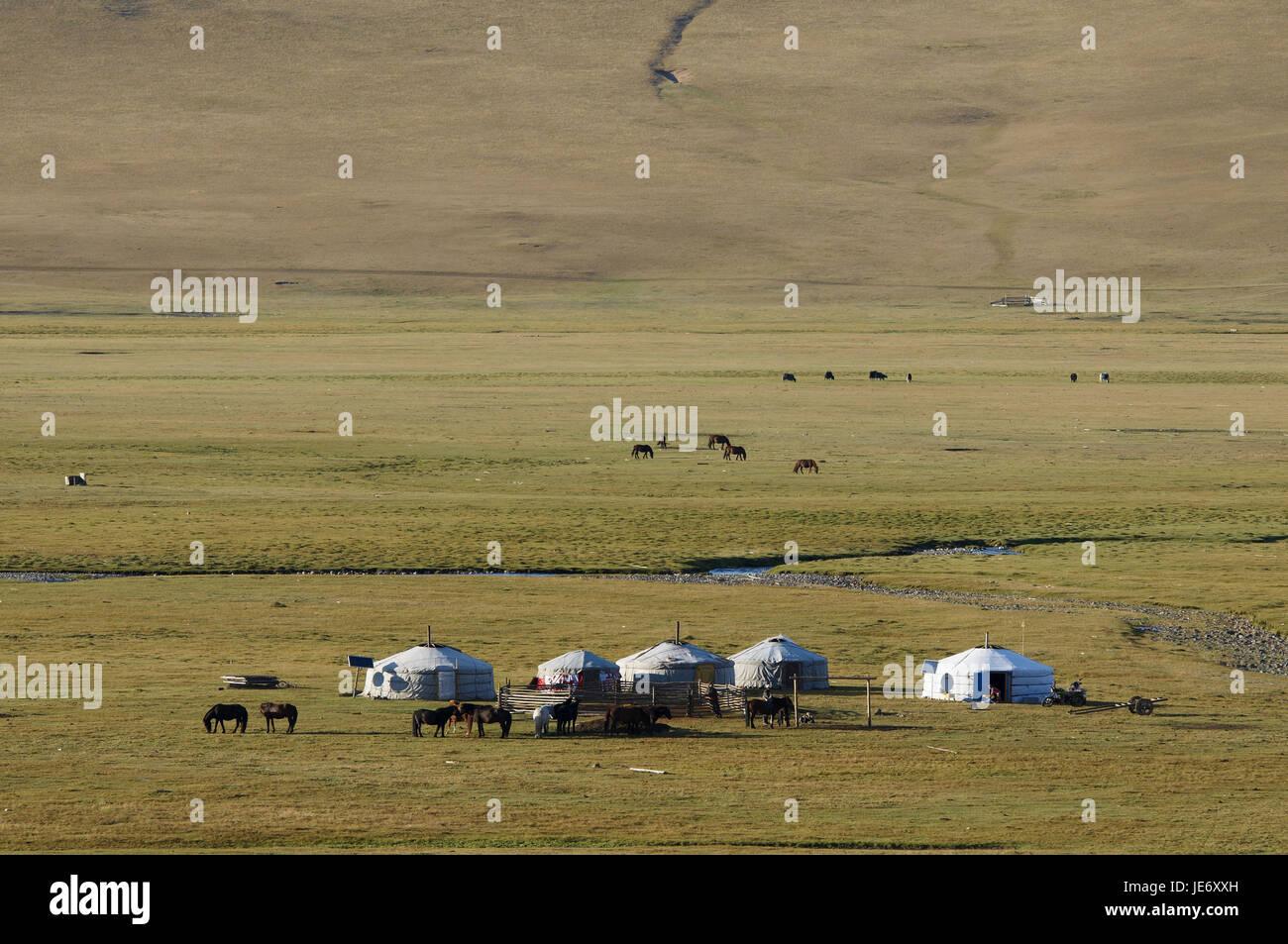 Mongolei, Zentralasien, Provinz Arkhangai, Nomad, Support, Jurten, Stockfoto