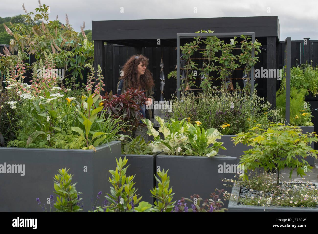 Designer Gehen Zwischen Den Hochbeeten In Bewegliche Fest Garten An