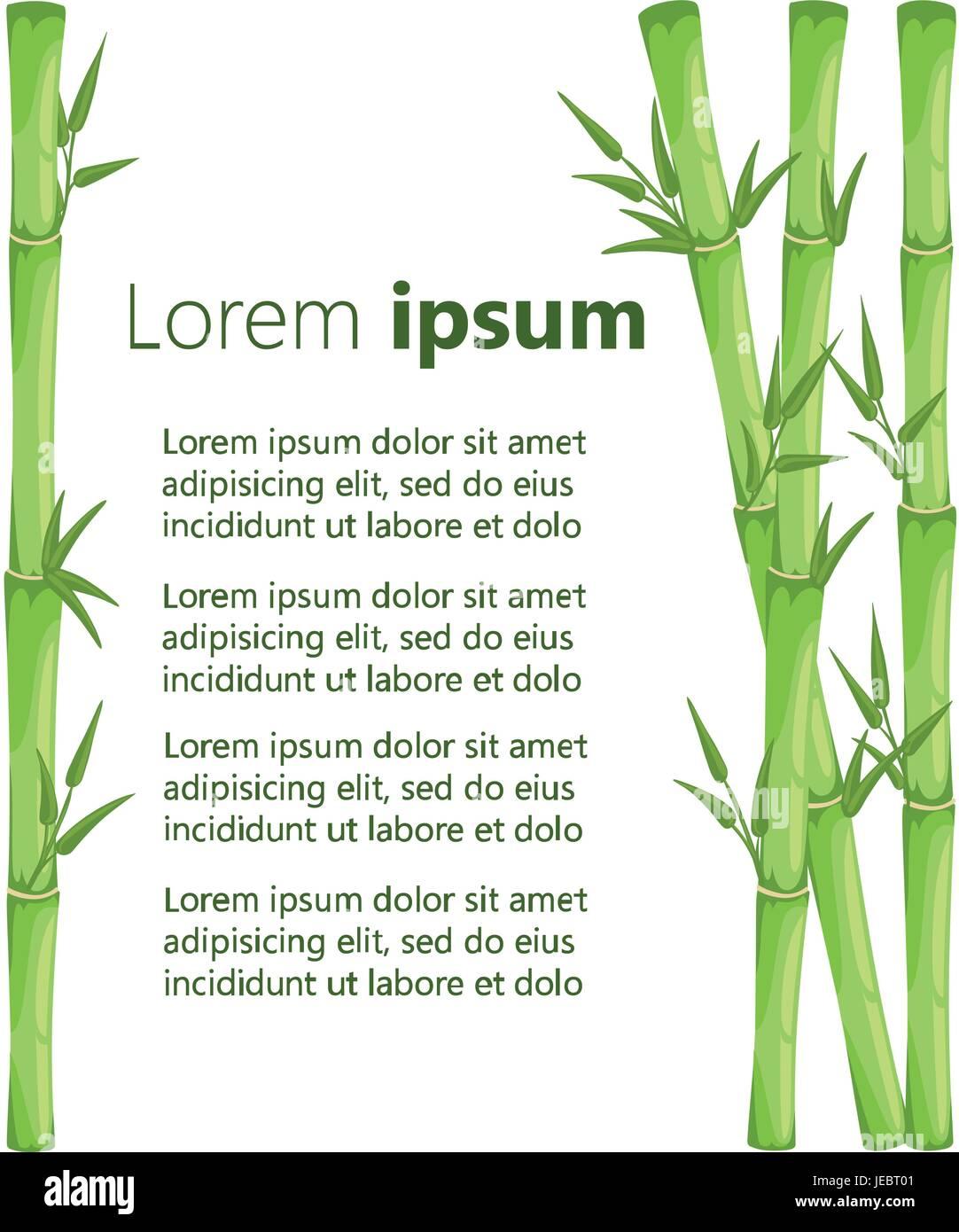 Bambus Mit Blatt Vektor Illustration Asiatische Bambu Zen Pflanzen