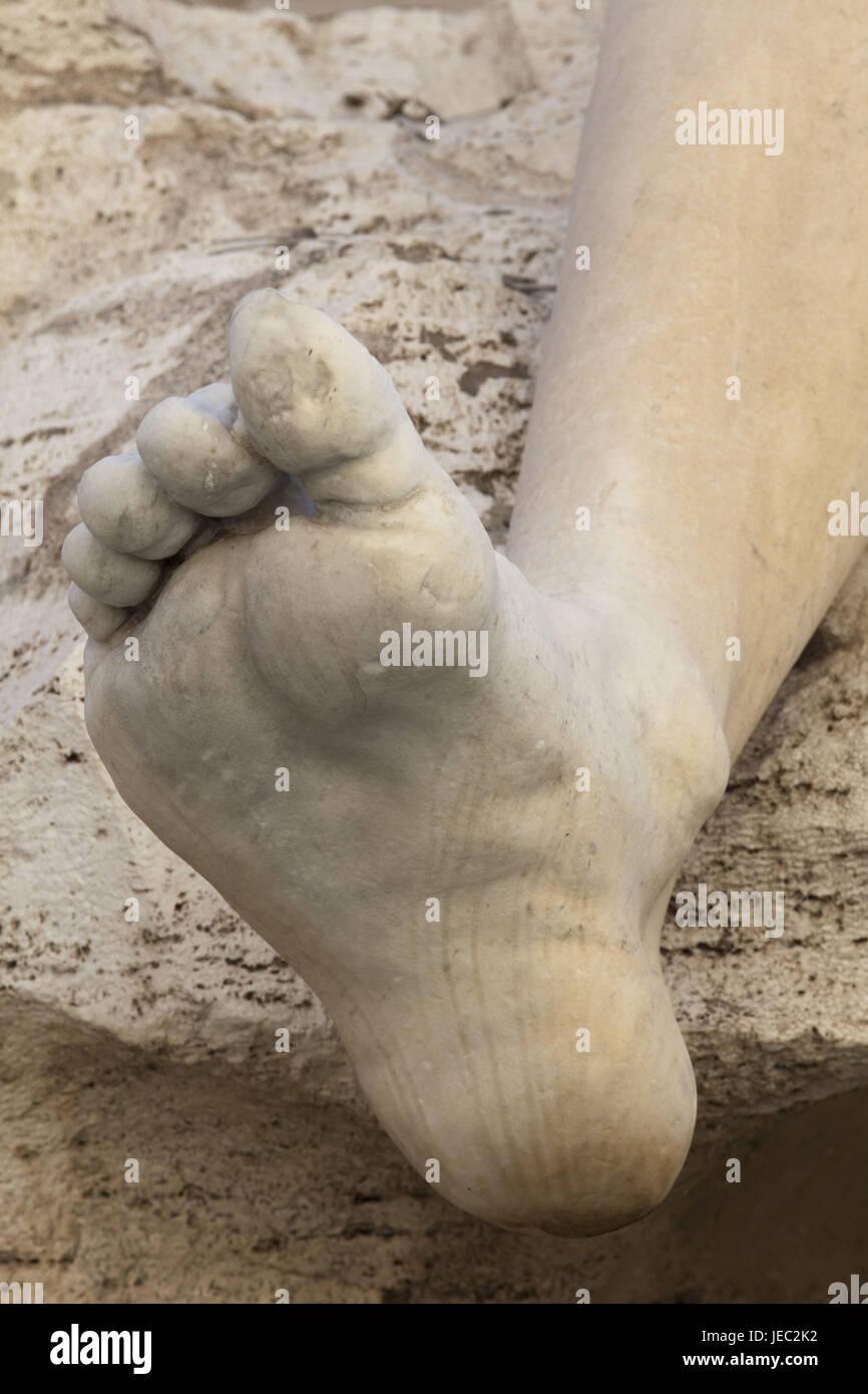Vier Zehen Pro Fuß Stockfotos & Vier Zehen Pro Fuß Bilder