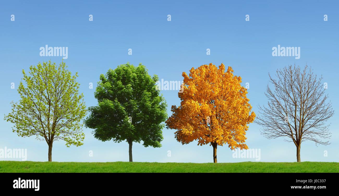 4 Jahreszeiten Stockfotos 4 Jahreszeiten Bilder Alamy