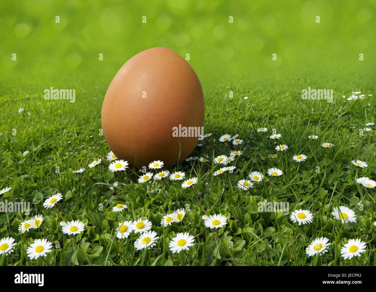 Fertility Icon Stockfotos & Fertility Icon Bilder - Alamy